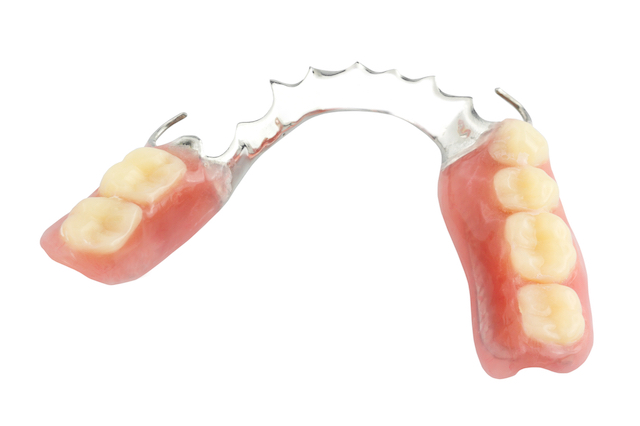 Partial dentures for back teeth isolated on a white background.